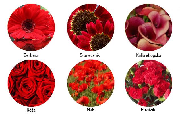Kwiaty Sezonowe Na Wesele Poradnik Slubny Mowie O Slubie